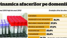 Ce afaceri au mers si ce afaceri nu au mers in Romania in 2013