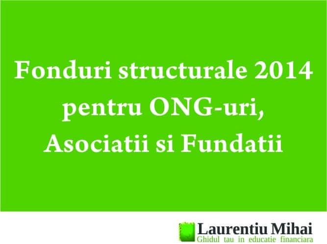 fonduri structurale 2014 ong
