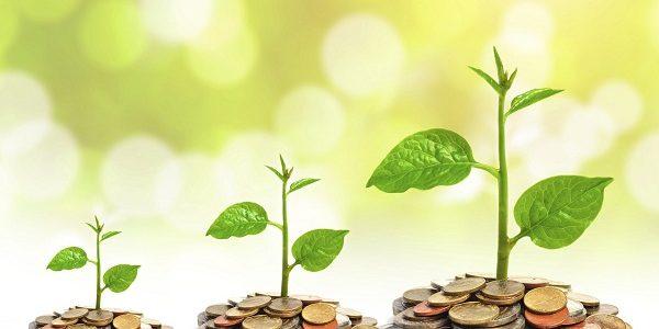 Fonduri mutuale – Tot ce trebuie sa stii daca esti incepator