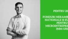 2017: Fonduri Nerambursabile Nationale si Europene pentru Microintreprinderi si IMM-uri